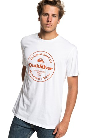 Quiksilver Scrtingredienss Erkek T-Shirt EQYZT05265