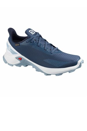 Salomon Alphacross Blast Gtx Outdoor Ayakkabı L411060